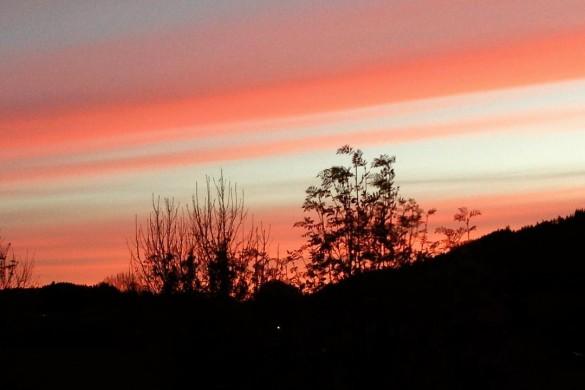 Abendstimmung in Aschau im Chiemgau #sonnenuntergang #aschau #chiemgau #gebirge #mountains #alps #alpenvorland #aschauerleben #aschauisaschau #aschauerleben #aschauentdecken #aschauinfo #alpenvorland #silhouette #farbverlauf #deinbayern